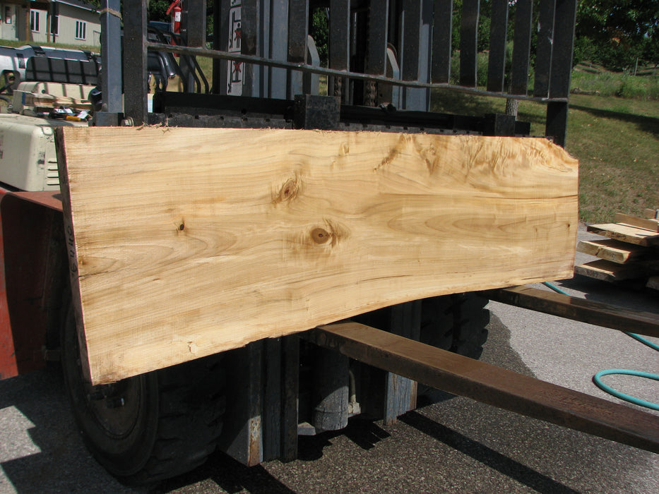 "Cottonwood #6440 - 2-1/8"" x 18"" to 22"" x 78"" - Big Wood Slabs"
