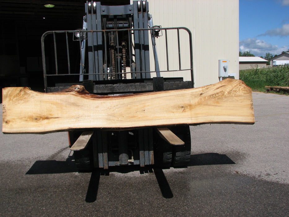 "Cottonwood #6462- 2-1/4"" x 14 to 22"" x 119"" - Big Wood Slabs"