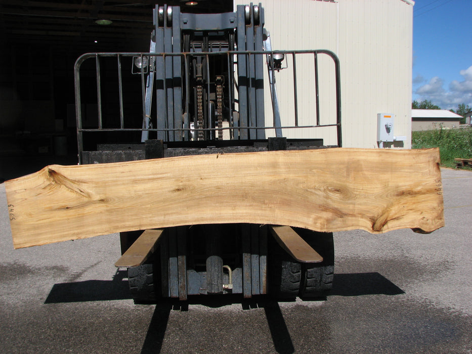"Cottonwood #6465 - 2-1/4"" x 19 to 23"" x 118"" FREE SHIPPING within the Contiguous US. - Big Wood Slabs"