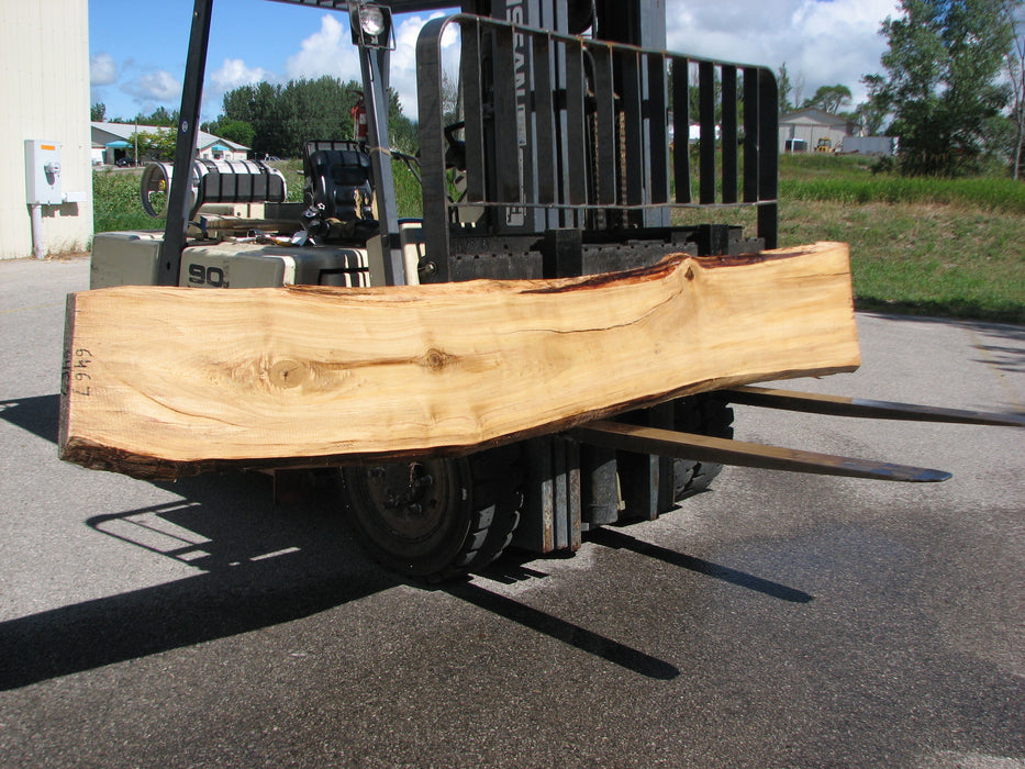 "Cottonwood #6467 - 2-1/4"" x 12"" - 24"" x 135"" FREE SHIPPING within the Contiguous US. - Big Wood Slabs"