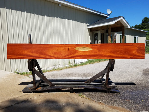 "Muirapiranga / Bloodwood #6498 - 15/16"" x 13-3/4"" x 120-3/4"" FREE SHIPPING within the Contiguous US."