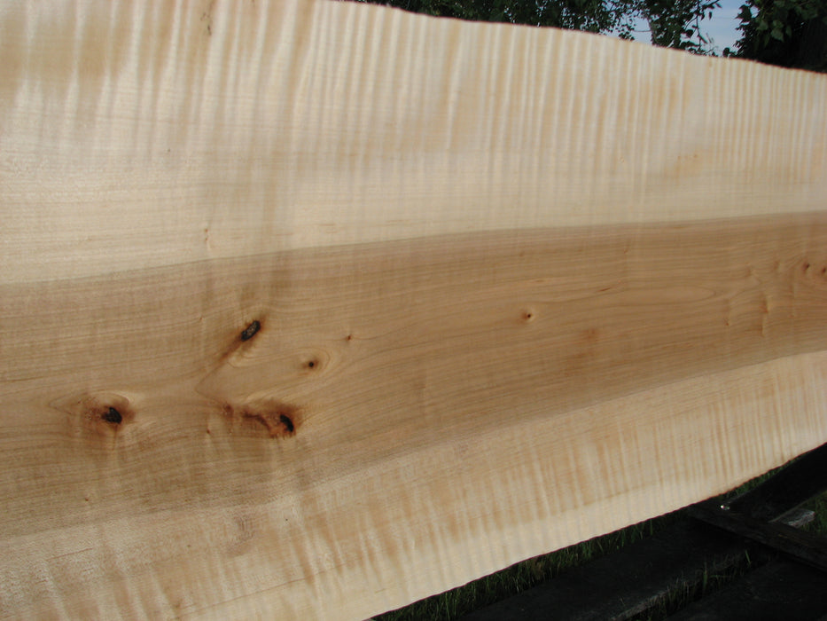 "Maple, Curly #6606(JW)- 15/16"" x 13-1/4"" - 14-1/4"" x 120"" FREE SHIPPING within the Contiguous US. - Big Wood Slabs"