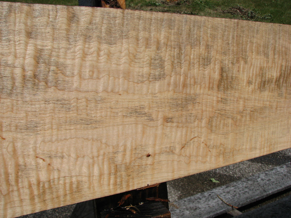 "Maple, Curly #6619(JW) - 1-3/8"" x 8-1/2"" x 100"" FREE SHIPPING within the Contiguous US. - Big Wood Slabs"