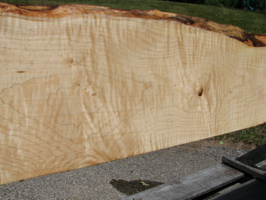 "Maple, Curly #6621(JW) - 1-1/4"" x 5-1/2"" to 8"" x 118-7/8"" FREE SHIPPING within the Contiguous US. - Big Wood Slabs"