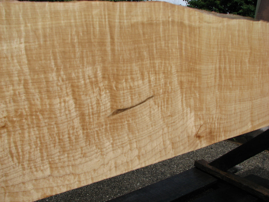 "Maple, Figured #6626(JW) - 15/16"" x 8-1/8"" to 10-1/2"" x 104"""