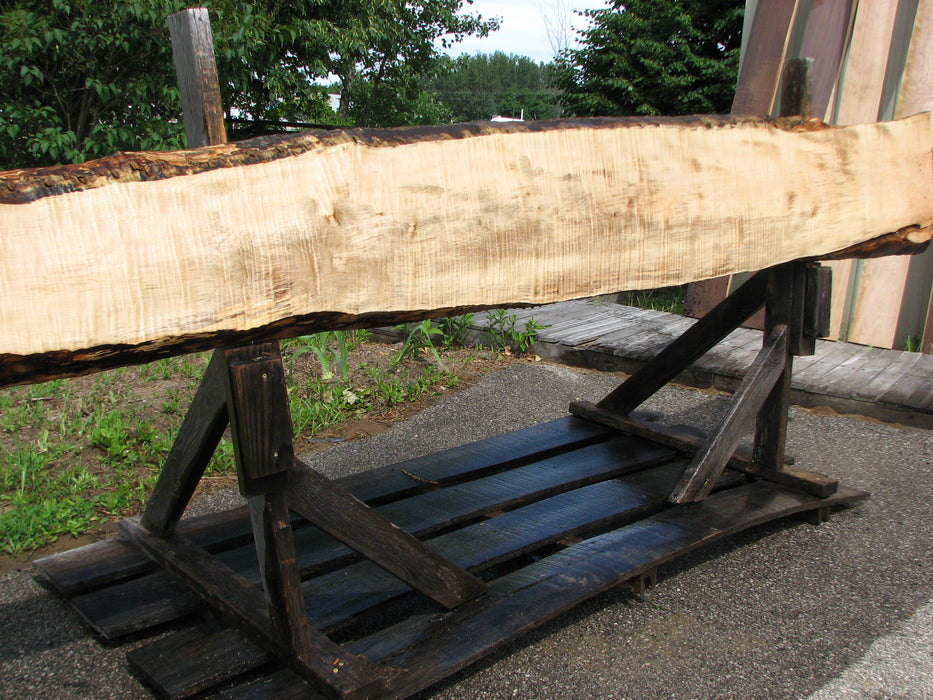 "Maple, Curly #6628(JW) - 1-13/16"" x 8-3/4"" to 16-1/2"" x 126"""