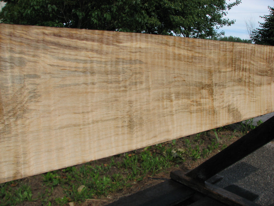 "Maple, Curly #6650(JW) - 15/16"" to 5-7/8"" x 108"""