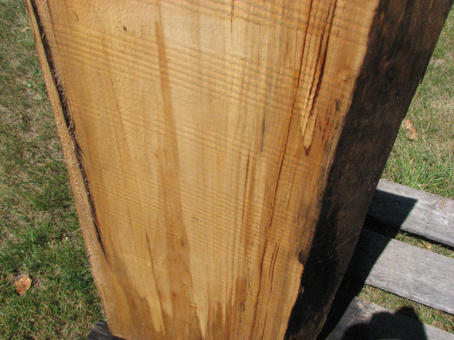 "Cottonwood #6681 - 2-1/2"" x 17-1/4"" to 18"" x 48-1/2"" FREE SHIPPING within the Contiguous US. - Big Wood Slabs"