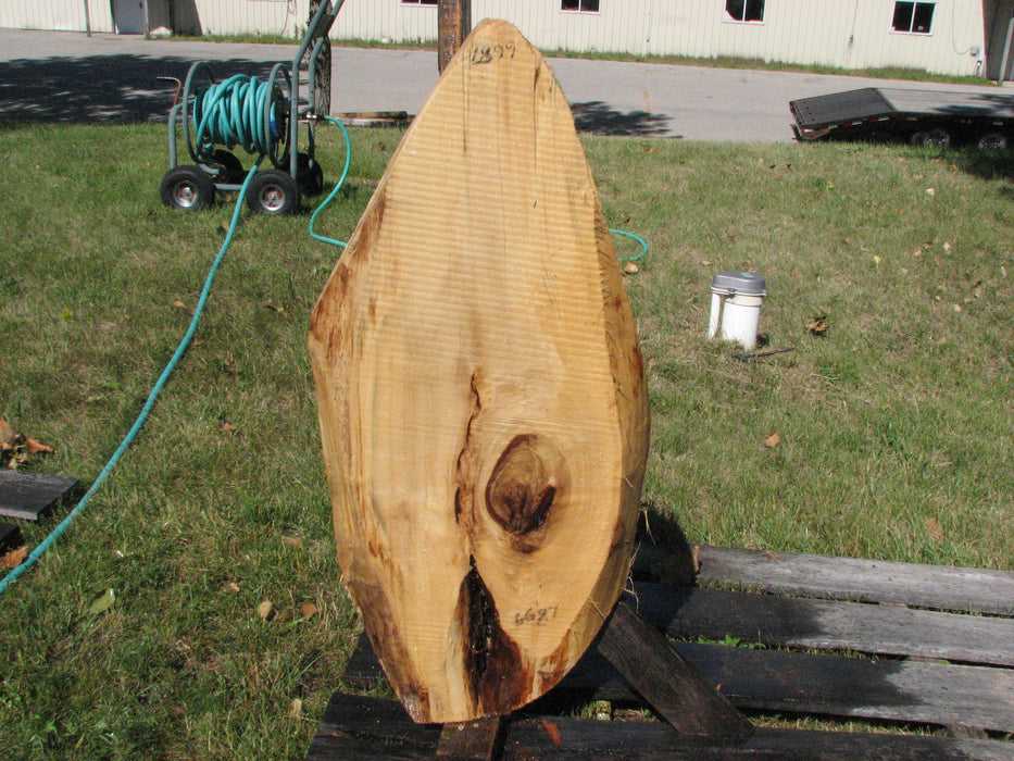 "Cottonwood - 2-1/2"" x 15"" x 41"" - Big Wood Slabs"