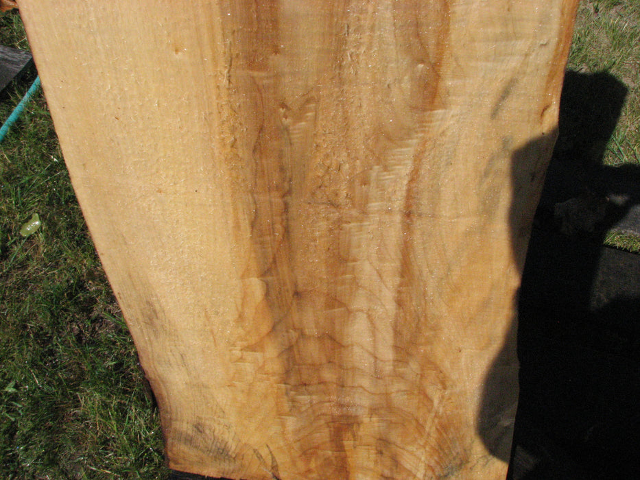 "Cottonwood #6688 - 2-1/2"" x 8-1/2"" to 20-1/2"" x 41-1/2"" FREE SHIPPING within the Contiguous US. - Big Wood Slabs"