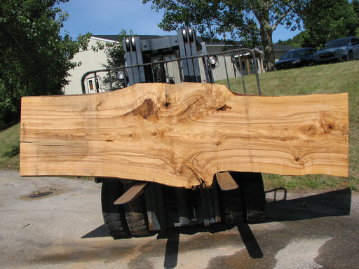 "Ash #6699(JS)- 3"" x 29-1/2"" to 41-1/2"" x 131"" FREE SHIPPING within the Contiguous US. - Big Wood Slabs"