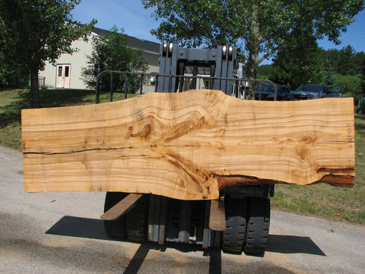 "Ash #6800(JS) - 3"" x 28-1/2"" to 42-1/4"" x 131"" FREE SHIPPING within the Contiguous US. - Big Wood Slabs"