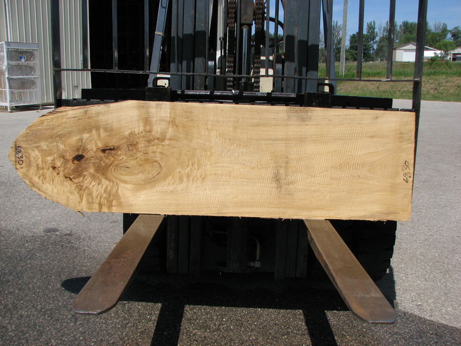 "Cottonwood #6830 - 2-1/4"" x 20-1/4"" to 21"" x 77"" - Big Wood Slabs"