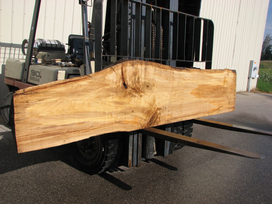 "Cottonwood #6845 - 2-1/4"" x 7"" - 25-1/2"" x 124"" FREE SHIPPING within the Contiguous US. - Big Wood Slabs"