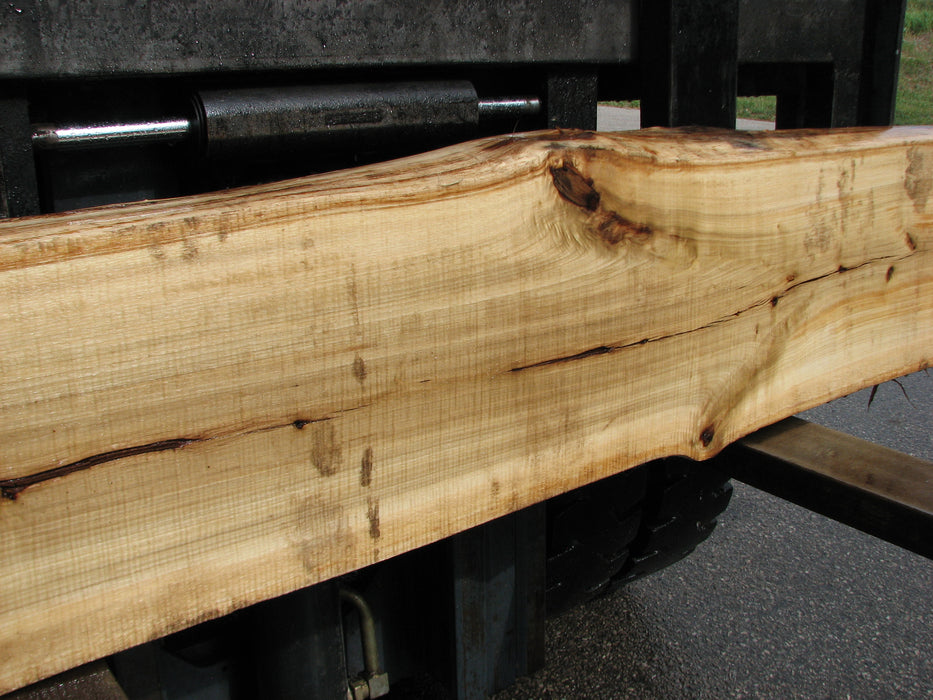"Cottonwood #6856 - 3-3/4"" x 11-3/4"" - 15"" x 125"""