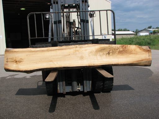 "Cottonwood #6857 - 3-3/4"" x 8"" - 17"" x 119"""