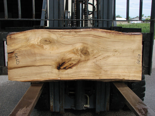 "Cottonwood #6860 - 3"" x 19"" - 21"" x 56"""