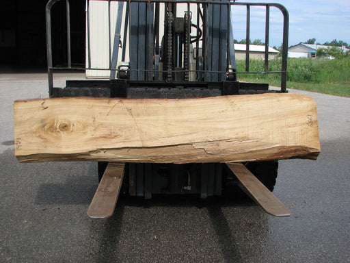 "Cottonwood #6861 - 3"" x 12"" - 16"" x 89"""