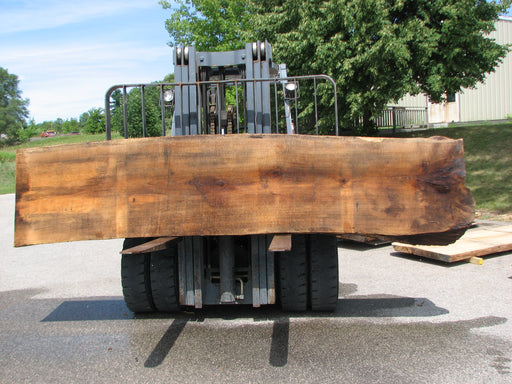 "Red Oak #6876(JS) - 2-3/8"" x 25"" to 30"" x 138"" FREE SHIPPING within the Contiguous US. - Big Wood Slabs"