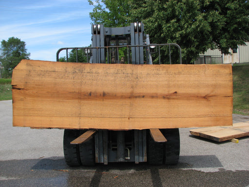 "Red Oak #6877(JS) - 3"" x 33"" to 36"" x 124"" FREE SHIPPING within the Contiguous US. - Big Wood Slabs"