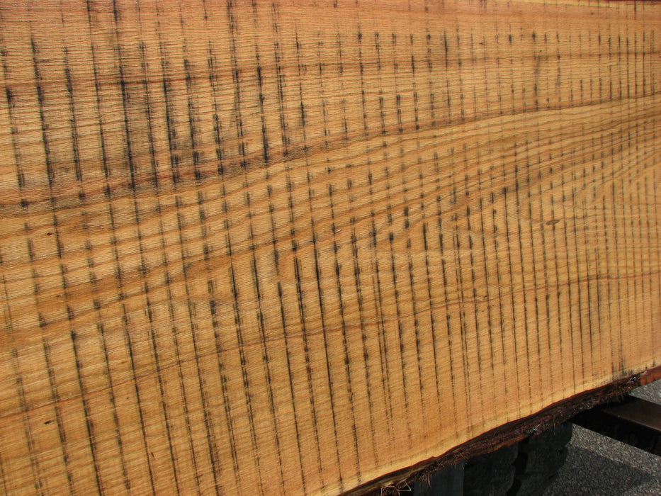 "Red Oak #6879(JS) - 3"" x 23"" to 38"" x 123"" FREE SHIPPING within the Contiguous US. - Big Wood Slabs"