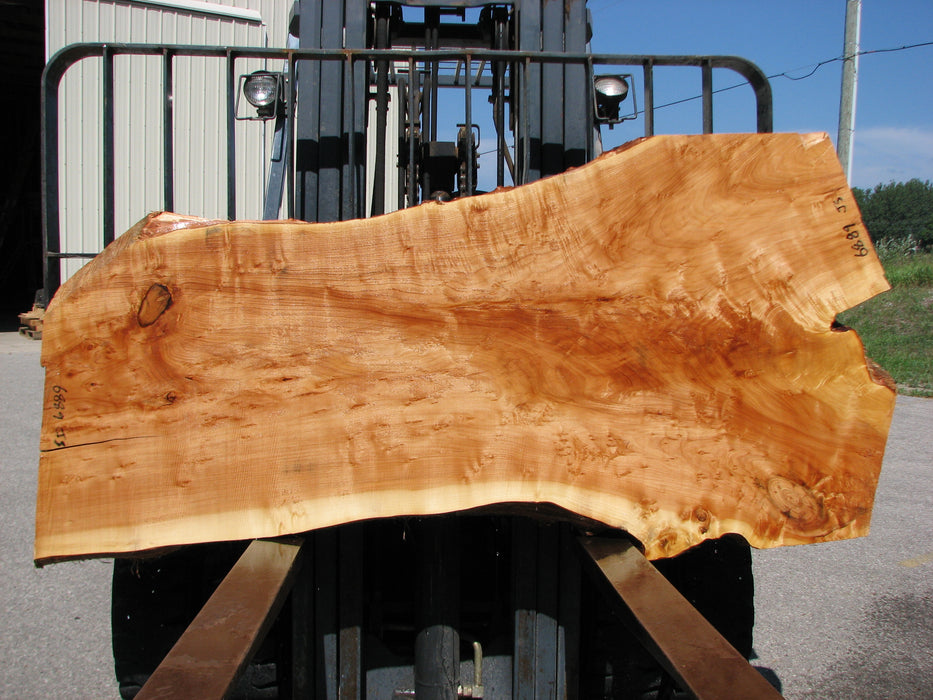 "Willow #6889 (JS) 3"" x 28"" x 40"" x 75"" FREE SHIPPING within the Contiguous US. - Big Wood Slabs"