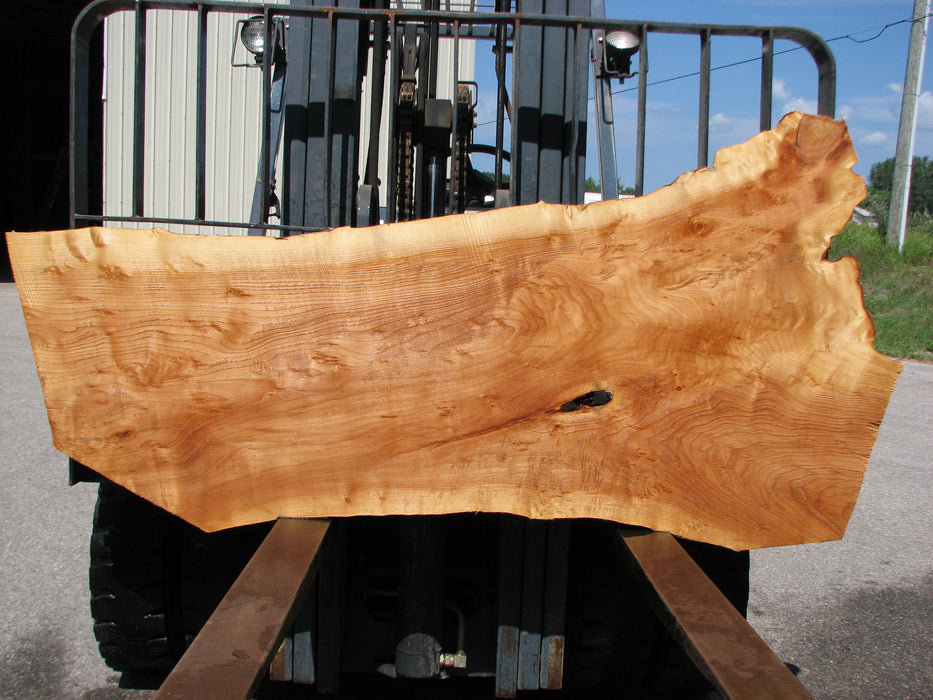 "Willow #6892 (JS) 3"" x 21"" x 35"" x 69"" FREE SHIPPING within the Contiguous US. - Big Wood Slabs"