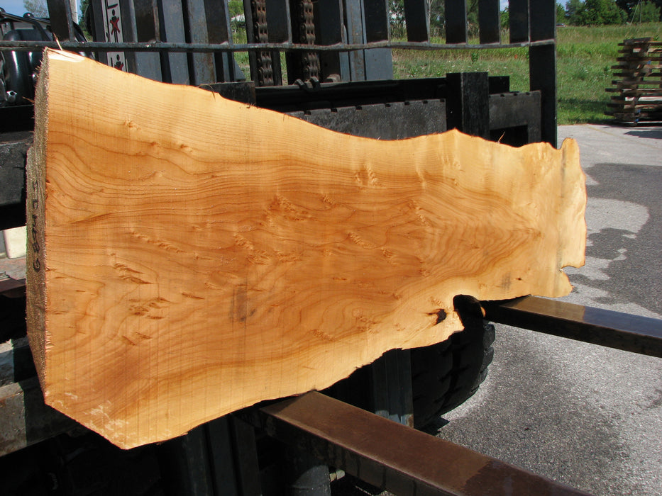 "Willow #6894 (JS) 4"" x 5"" x 14-1/2"" x 55"" FREE SHIPPING within the Contiguous US. - Big Wood Slabs"