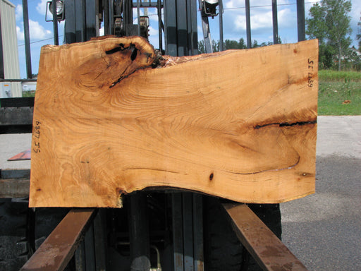 "Red Oak #6897(JS) - 3"" x 23"" to 34"" x 58"" FREE SHIPPING within the Contiguous US. - Big Wood Slabs"