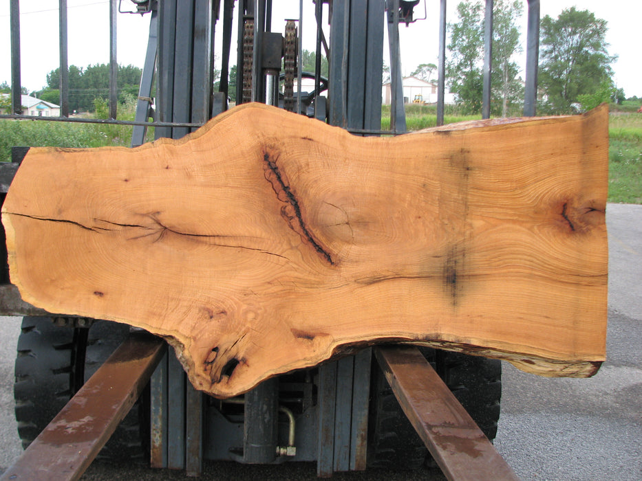 "Red Oak #6899(JS) - 3"" x 18"" to 33"" x 68"" FREE SHIPPING within the Contiguous US. - Big Wood Slabs"