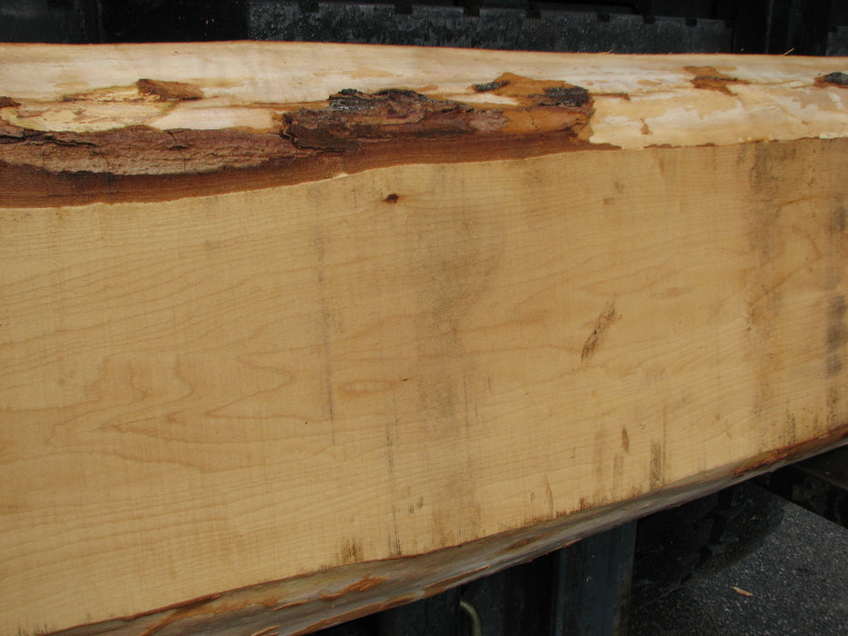 "Maple #7025 (JS) - 4"" x 12"" to 14"" x 70"" FREE SHIPPING within the Contiguous US. - Big Wood Slabs"