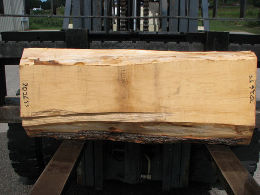 "Maple #7026 (JS) - 4"" x 9-1/2"" to 13-1/2"" x 48"""