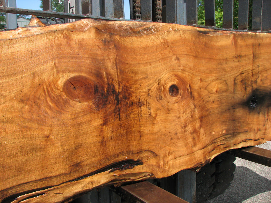 "Butternut, White Walnut #7027 (JS) - 3"" x 20"" to 27"" x 141"" - Big Wood Slabs"