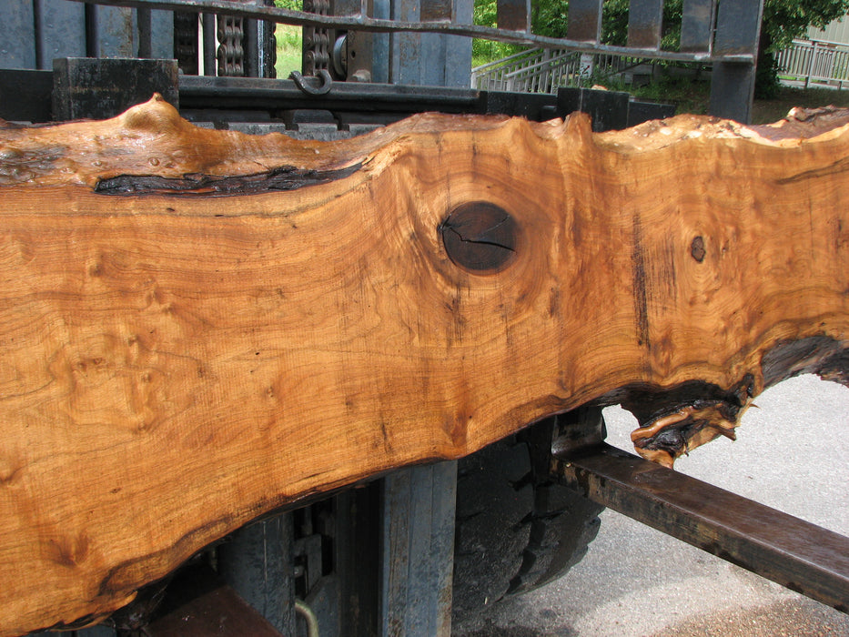 "Butternut, White Walnut #7029 (JS) - 2-1/2"" x 14"" to 25"" x 105"" - Big Wood Slabs"