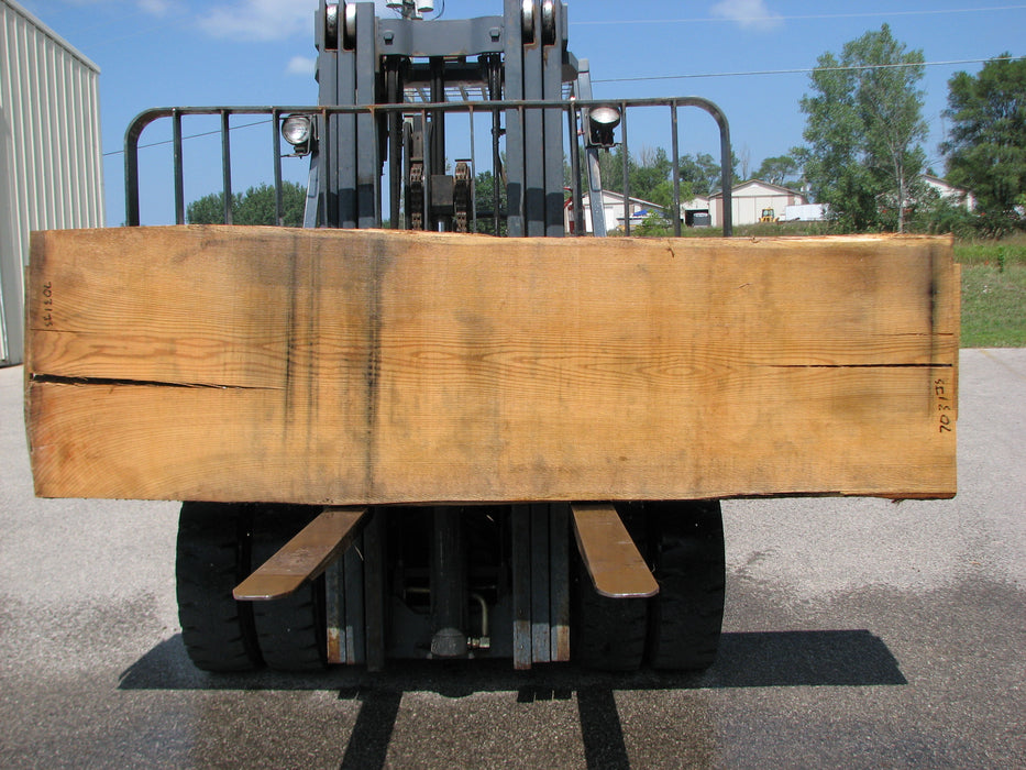 "Red Oak #7031 (JS) - 2-1/2"" x 29"" to 32"" x 108"" FREE SHIPPING within the Contiguous US. - Big Wood Slabs"