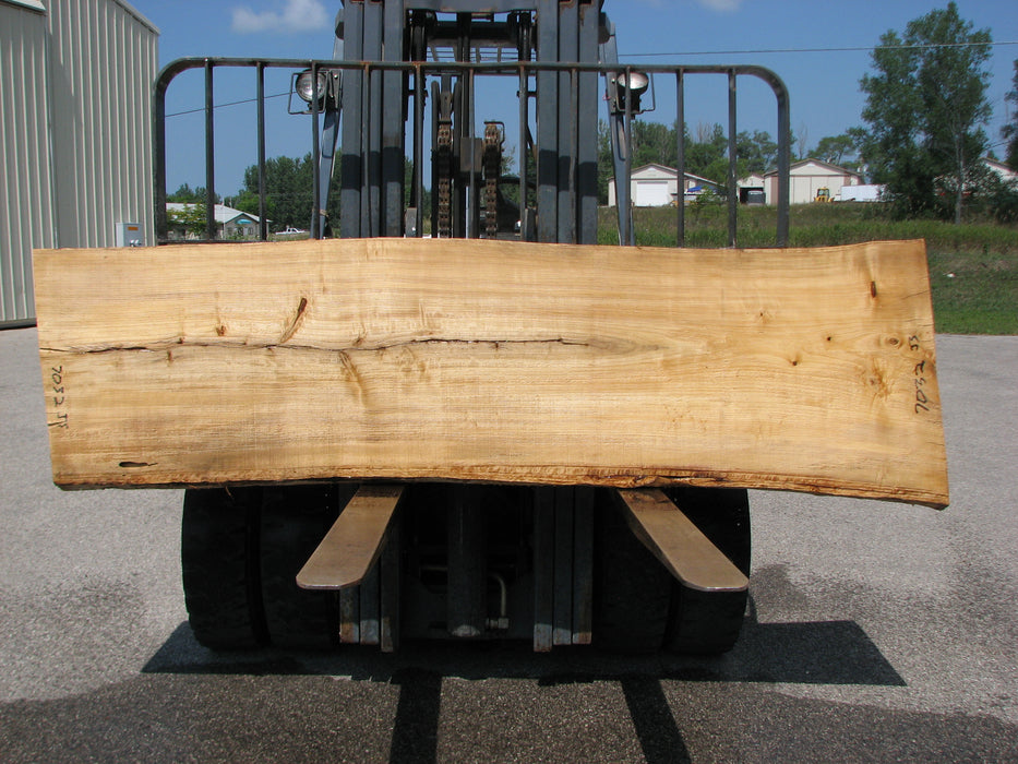 "Cottonwood #7032 (JS) - 2-3/4"" x 25"" to 29"" x 99"""