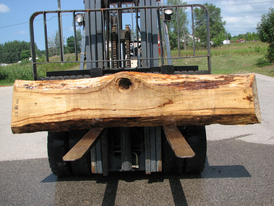 "Cottonwood #7038 (JS) - 3"" x 10"" to 16-1/2"" x 94"" FREE SHIPPING within the Contiguous US. - Big Wood Slabs"