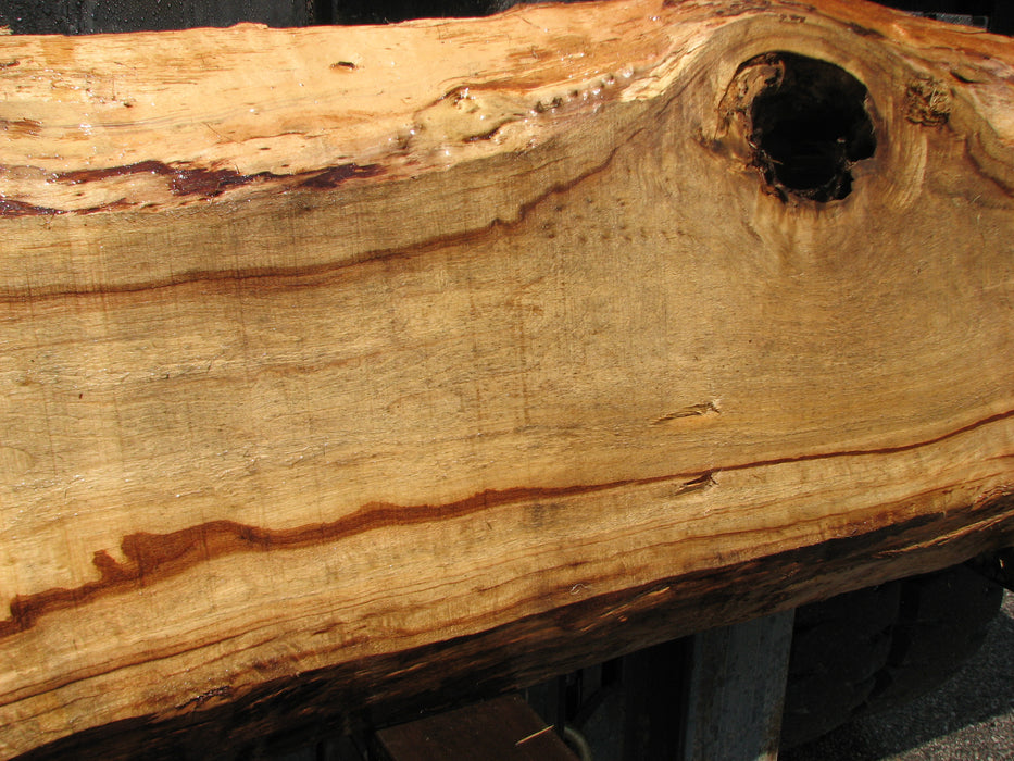 "Cottonwood #7038 (JS) - 3"" x 10"" to 16-1/2"" x 94"""