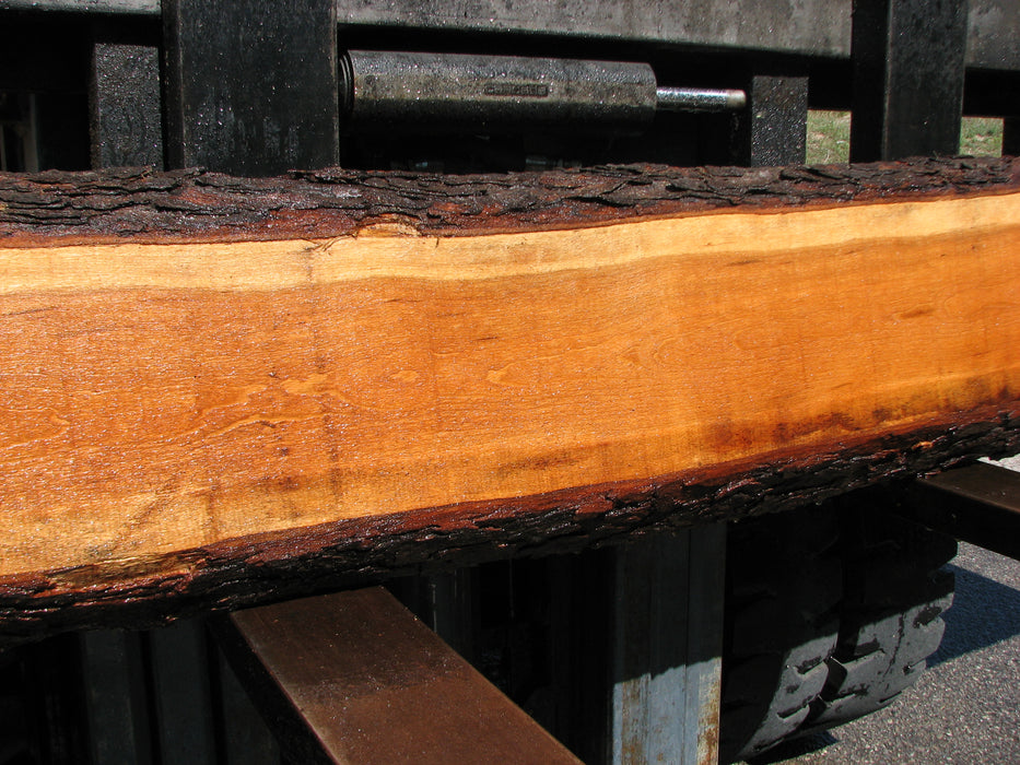 "Cherry, American #7057 (JS) - 2-1/2"" x 6"" to 9"" x 134"" FREE SHIPPING within the Contiguous US. - Big Wood Slabs"