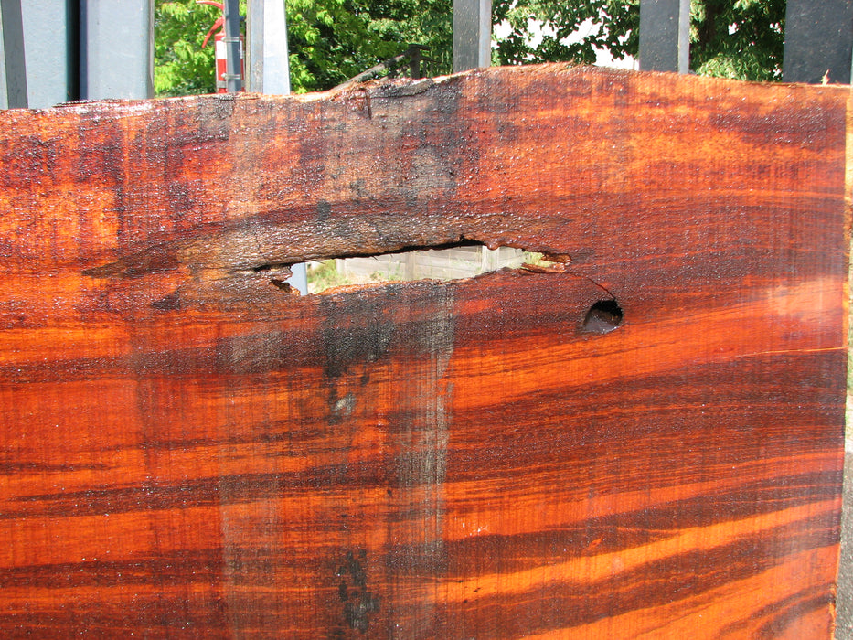 "Goncalo Alves / Tigerwood #7068- 2-1/8"" x 23-1/4"" to 27"" x 66"" FREE SHIPPING within the Contiguous US. - Big Wood Slabs"