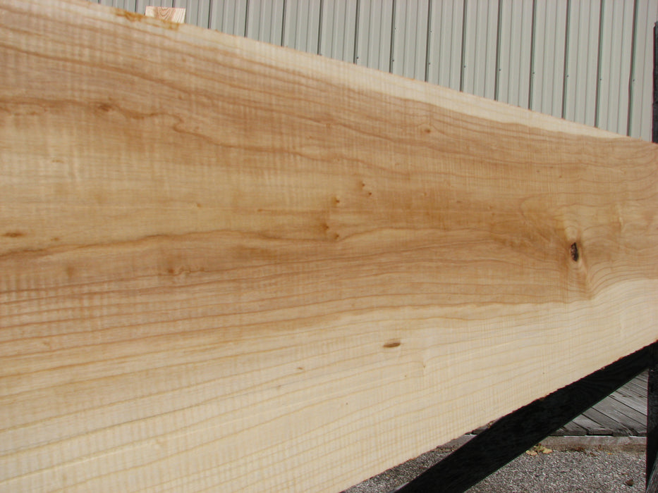 "Ash #7082 (JW) - 13/16"" x 11-1/2"" x 83"" - Big Wood Slabs"