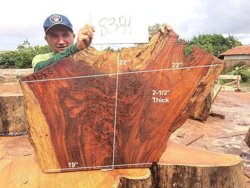 "Jatoba / Brazilian Cherry - 2-1/2"" x 19"" to 22"" x 22"" - Big Wood Slabs"