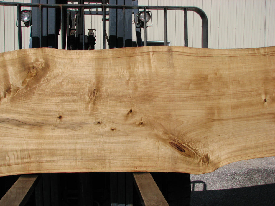 "Cottonwood #7403(OC) 2-1/4"" x 33"" to 36"" x 139"" FREE SHIPPING within the Contiguous US. - Big Wood Slabs"