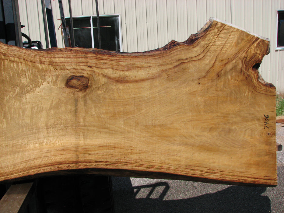 "Cottonwood #7406(OC) - 2-1/2"" x 25"" to 38"" x 146"" FREE SHIPPING within the Contiguous US. - Big Wood Slabs"