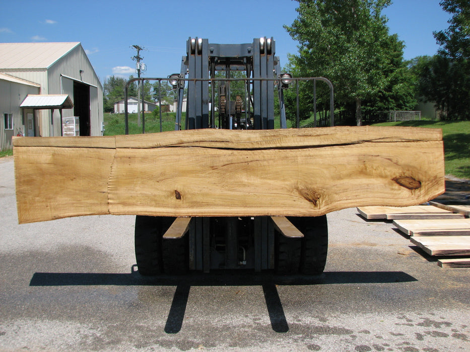 "Cottonwood #7414(OC) - 2-1/2"" x 17"" to 24""and 3""-6"" strip x 148"" FREE SHIPPING within the Contiguous US. - Big Wood Slabs"