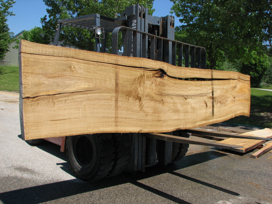 "Cottonwood #7417(OC) - 2-1/4"" x 21"" to 28""and 3""-5"" strip x 175"" FREE SHIPPING within the Contiguous US. - Big Wood Slabs"