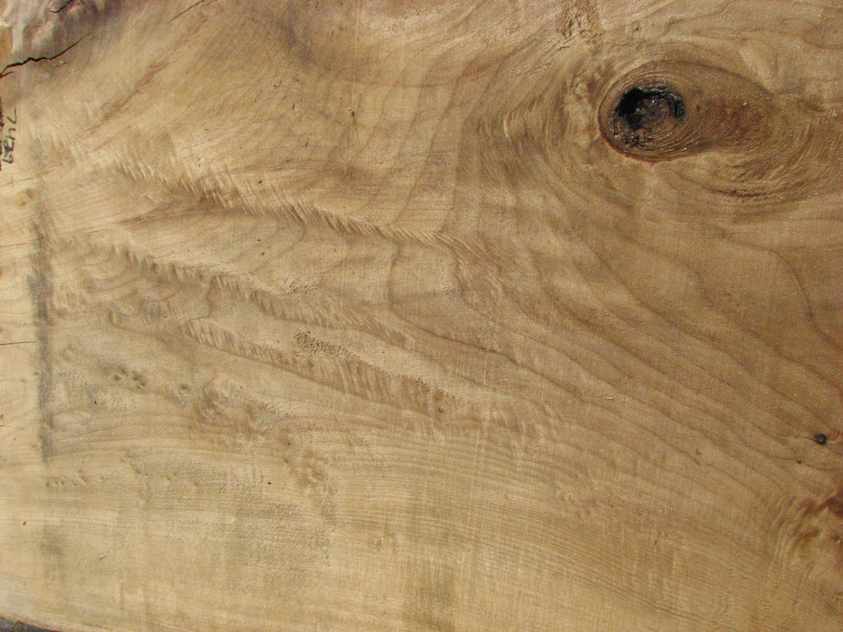 "Cottonwood #7429(OC) - 2-1/2"" x 38"" to 51"" x 123"" FREE SHIPPING within the Contiguous US. - Big Wood Slabs"