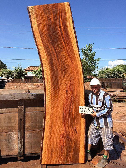 "Jatoba / Brazilian Cherry #5737- 3-1/2"" x 31"" to 32"" x 122"" FREE SHIPPING within the Contiguous US. - Big Wood Slabs"