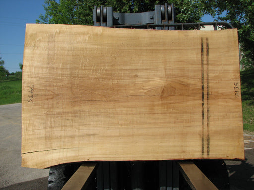 "Cottonwood #7435(OC) - 2-1/2"" x 43"" to 50"" x 73"" FREE SHIPPING within the Contiguous US. - Big Wood Slabs"