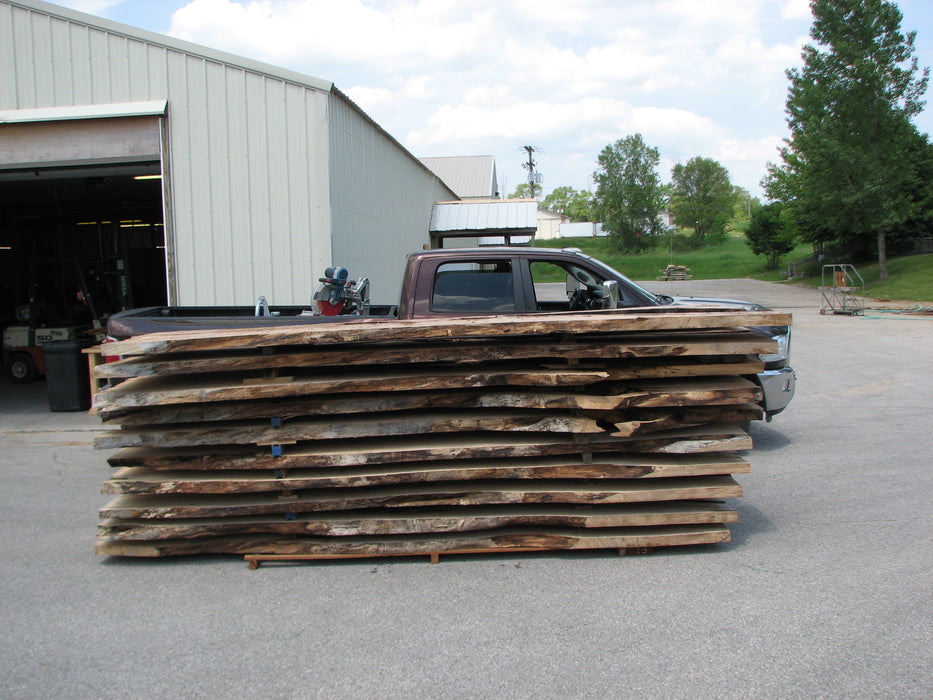 "Maple #7445(TB) - 2-1/2"" x 48"" to 58"" (A-26""-30"", B-16""-27"") x 163"" FREE SHIPPING within the Contiguous US. - Big Wood Slabs"